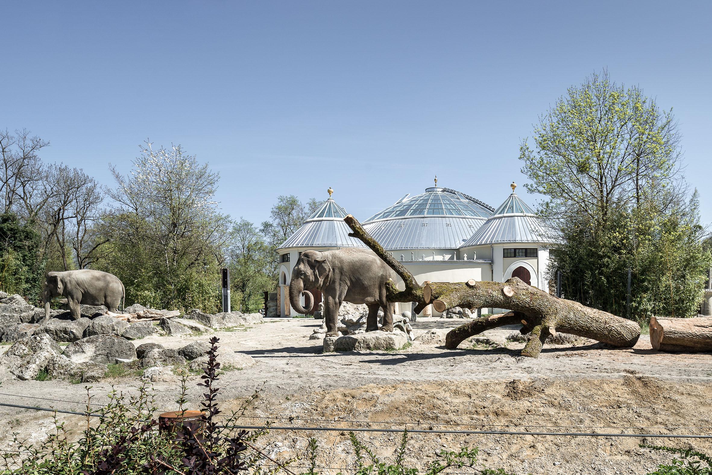 Architekturfotografie Elefantenhaus Tierpark Hellabrunn München
